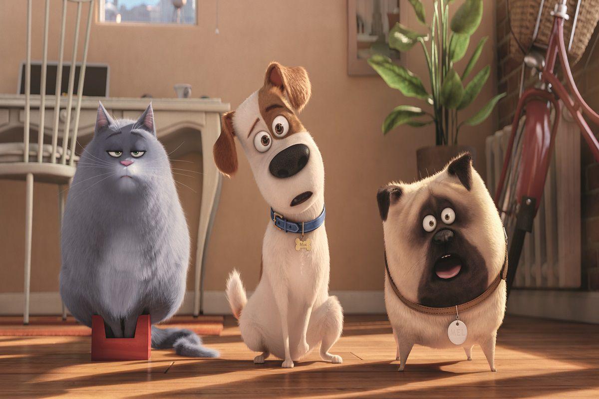 """Bolivia: """"La vida secreta de tus mascotas"""" fue la película más vista durante el fin de semana"""